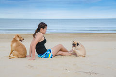 Asian woman girl playing with two dog on beach, Pug and Labrador Retriever Stock Photo