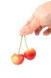 Asian woman hand holding two yellow cherries Stock Images