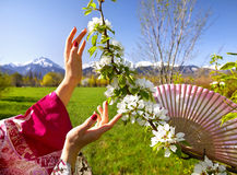 Asian woman hands and blossom tree Stock Photos