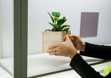 Asian woman hands placing a wooden box Royalty Free Stock Photos