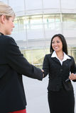 Asian Woman Handshake Royalty Free Stock Images