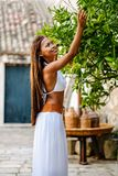 Asian woman harvesting green limes from organically grown lime tree in rural Mediterranean setting. Pure natural healthy vitamin.  stock photos