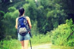 Asian woman hiking at beautiful trail Stock Photography