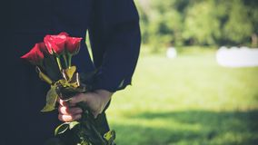 An Asian woman holding and hiding red roses bouquet on her back with green nature Stock Images