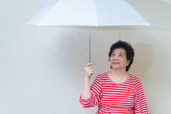 Asian woman holding umbrella in studio shot, specialty tones Royalty Free Stock Image