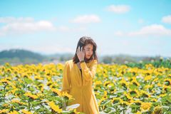 Asian woman joyful with beautiful sunflower field. stock photo