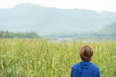 Asian woman looking at field and mountain royalty free stock images