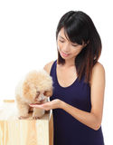 Asian woman with poodle dog Royalty Free Stock Photography