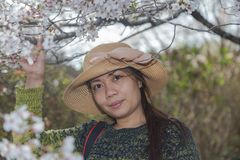 Asian woman with cherry blossom`s overhead. stock image