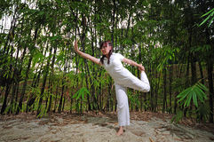 Asian Woman practising Yoga in Woods 3 Royalty Free Stock Photos