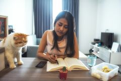 Asian woman read book with cat stock photo