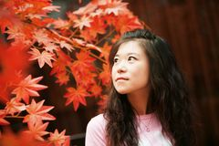 Asian woman in red autumn. Sweet asian woman and red maple leaves in autumn day royalty free stock photos