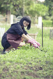 Asian woman relaxing happiness emotion planting organic vegetabl Stock Image