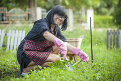 Asian woman relaxing happiness emotion planting organic vegetabl Royalty Free Stock Photos