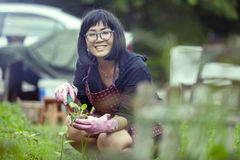 Asian woman relaxing happiness emotion planting organic vegetabl Stock Photos