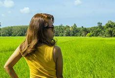 Asian woman on rice field Royalty Free Stock Images