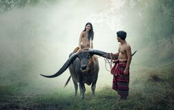 Asian woman riding water buffalo