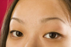 Asian woman's eyes. Close up of young Asian girl's face royalty free stock image