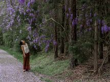 Asian woman in sarong walking on sidewalk covered with wisteria petals royalty free stock photos