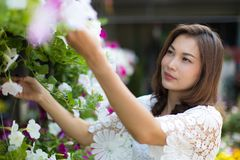 Asian woman select and buy flower. Beautiful Asian woman selecting flower in floral shop, lifestyle of modern housewife stock photography