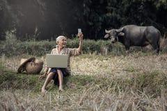 Asian woman Selfie stock photography