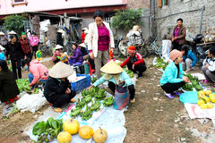 Asian woman selling aromatic vegetables in the market Royalty Free Stock Photos