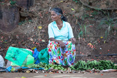 Asian woman selling vegetables in the street. Sri Lanka. A poor woman is selling the vegetables resting on the ground. Many people in Sri Lanka earn some money royalty free stock photo