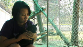 Asian woman and siamese cat best friends playing together. Stock video stock video