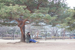 Asian woman sitting relax under big tree Royalty Free Stock Image