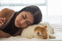 Asian woman sleep with exotic shorthair cat. Attractive Asian tan woman sleep with exotic shorthair brown cat on white bed with copy space for text. Girl with royalty free stock photography