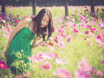 Asian woman smelling a cosmos flower Royalty Free Stock Image