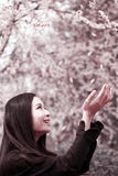 Asian woman in spring Royalty Free Stock Photo