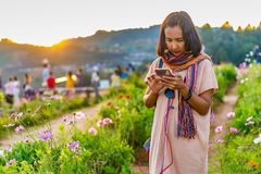 Asian Woman Standing Among Flowers Meadow and Chatting Online Mobile Phone with Beautiful Sunset Background at Mon Jam, Thailand. Asian Woman Standing Among stock images