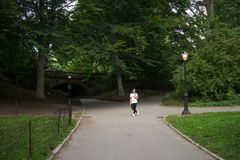 Asian Woman standing by Glade Arch in Central Park. Manhattan, New York City Stock Photos