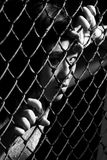 Asian woman staring fiercely through a fence Royalty Free Stock Photography