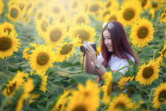 Asian woman are taking photos in the sunflower field fun. Royalty Free Stock Image