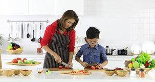 Asian woman teaching son. Beautiful Asian woman in red shirt and black apron teaching her son how to arrange fake fruits and vegetables for decoration in white stock footage