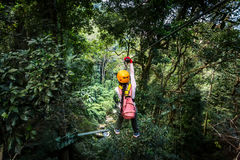 Asian woman TOURIST adult wearing casual clothes Zip Line On Focus FOREST TR royalty free stock photography