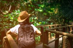 Asian woman tourist with hat and backpack standing and start walking on nature trail bridge in tropical forest. Alone young woman traveler on vacation in Royalty Free Stock Photo