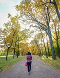 An Asian woman walking at autumn garden stock photography