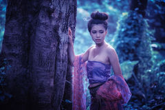 Asian woman wearing Thai Lanna series, identity culture of Thail Royalty Free Stock Image