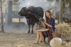 Asian woman wearing traditional thai culture,in field,vintage style listening radio on buffalo and farm background stock photo
