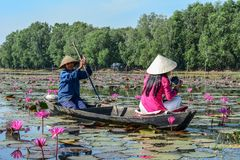 Asian woman on the wooden boat royalty free stock photos
