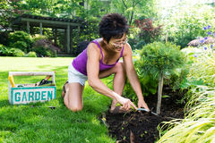 Asian Woman Working in Her Garden Stock Photo
