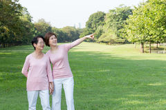 Asian women in the park. Portrait of Asian women in the park Royalty Free Stock Image