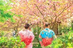 Philosopher`s Walk women in kimono Stock Photography