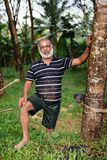 Asian worker in rubber tree plantation Royalty Free Stock Photo
