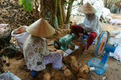Asian worker, wood workshop, coconut product Royalty Free Stock Photography