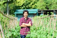 Asian young farmer standing in vegetables garden stock photos