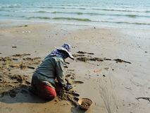 Asians are finding clams on the beach to sell in the market. Chanthaburi Thailand stock photography